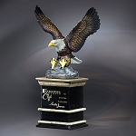 Natural Leadership Eagle Recognition Award