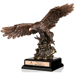 Soaring Heights Bronze Eagle Award