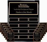 9x12 Employee Plaque Program High Gloss Ebony Plaque