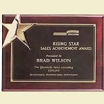 Piano Finish Star Recognition Plaque 9