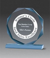 Beveled Octagon Acrylic Award - 6""