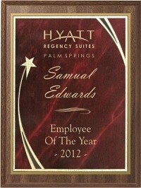 "Economy Award Plaque - Star Plate - 9""x12"""